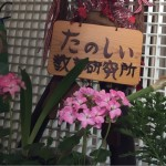 こいのぼりと花の彩り