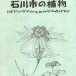 伊波善勇先生の植物線画|どんぐり