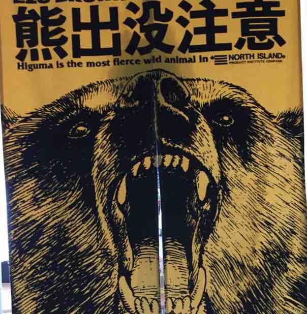 熊の皮をかぶった羊2