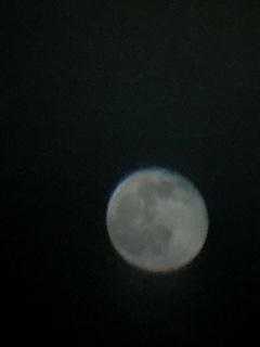 ガリレオの見た月