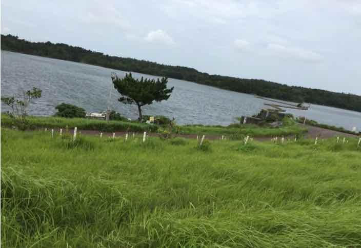 たのしいウォーキング 倉敷湖