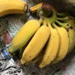 径(みち)行けば バナナと歩行者死亡事故数