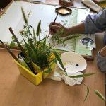 野草画でウェルカムスペース たのしい教育研究所は野草でいっぱい!