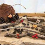 展示はたのしさを広げる:たのしい秋の展示 ② たのしい教育実践編