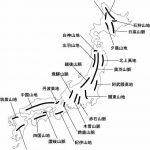 楽しい社会/たのしい楽しい地理の学習/ダージリン・ティーから始まる世界①/たのしい社会科